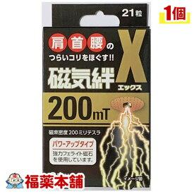 磁気絆X 21粒 [ゆうパケット・送料無料] 「YP30」