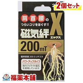 磁気絆X(エックス) 21粒×2個 [ゆうパケット・送料無料] 「YP30」