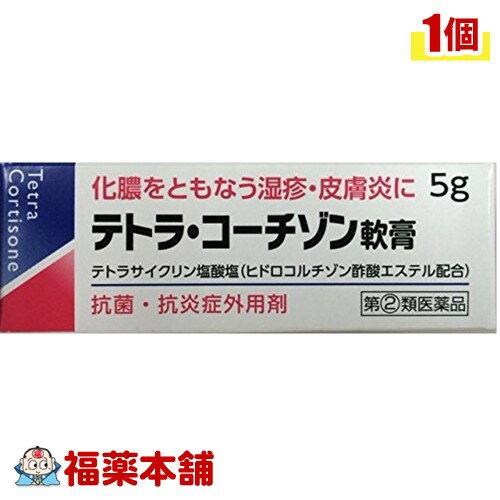 【第(2)類医薬品】テトラ・コーチゾン軟膏(5g) [ゆうパケット送料無料] 「YP30」