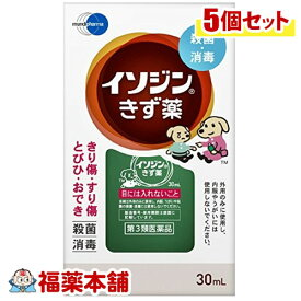 【第3類医薬品】イソジンきず薬(30ml)×5個 [ゆうパケット送料無料] 「YP30」