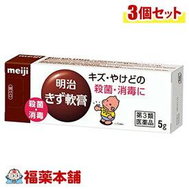 【第3類医薬品】明治 きず軟膏(5g×3本)[ゆうパケット・送料無料] 「YP20」