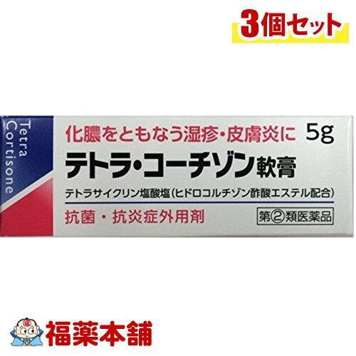 【第(2)類医薬品】テトラ・コーチゾン軟膏(5g)×3個 [ゆうパケット送料無料] 「YP30」