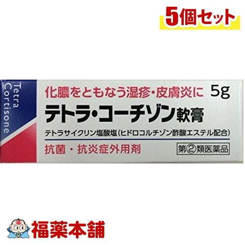 【第(2)類医薬品】テトラ・コーチゾン軟膏(5g)×5個 [ゆうパケット送料無料] 「YP30」