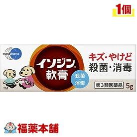 【第3類医薬品】イソジン軟膏(5g) [ゆうパケット送料無料] 「YP20」