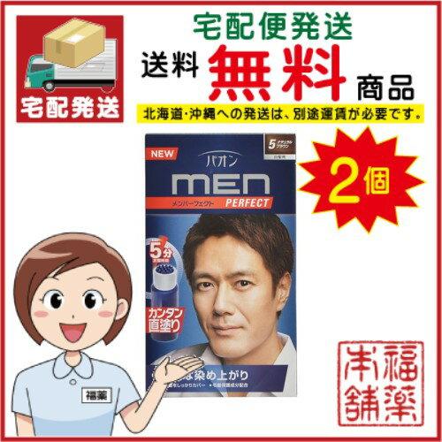 パオンメンパーフェクト 5 ナチュラルブラウン ×2箱 [宅配便・送料無料]