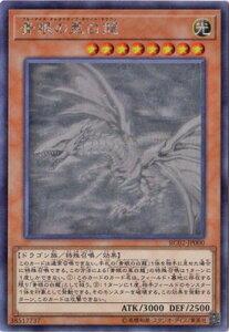 遊戯王 第10期 RC02-JP000 青眼の亜白龍 【ホログラフィックレア】
