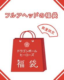 【楽天スーパーSALE】ドラゴンボールヒーローズ福袋 10000円 お一人様1点まで【ゆうメール配送不可】