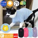 【送料込】【2020年冬新作】【猫専用】猫用シンプル袖付きTシャツ【ネコポス値2】【猫服 キャットウエア タンクトップ 保護猫 ミックス…