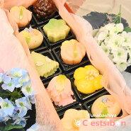 季節の上生菓子詰め合わせ10個入♪