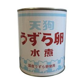 天狗缶詰 うずら卵 水煮 2号缶 430g×12缶