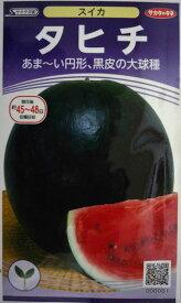 【サカタのタネ】タヒチ西瓜 小袋