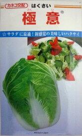 【カネコ種苗】極意白菜 10ml
