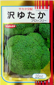 【サカタのタネ】沢ゆたかブロッコリー 20ml