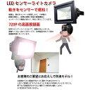 防犯カメラ 500万画素CMOS 動体感知で自動録画 IP56防水仕様 屋外使用可 動体検知センサー付 投光器型 LEDSDV001