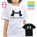 NyanderNyamour おもしろ Tシャツ ( ニャンダーニャーマー ) 雑貨 メンズ トイレ ベッド ケージ おもちゃ 砂