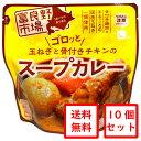 ゴロッと玉ねぎと骨付きチキンのスープカレー10個セット / レトルト