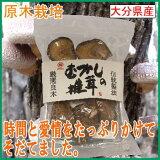 【まるさん】むかしの椎茸