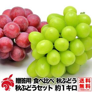 食べ比べ 贈答用 秋ぶどうセット クイーンニーナ シャインマスカット 約1キロ 2房 種無し 1000g前後 送料無料 産地直送 ブドウ 葡萄