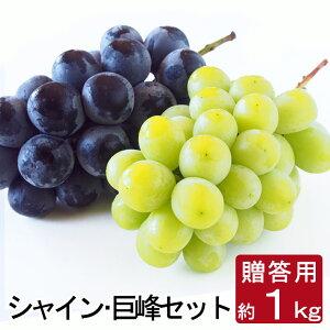 贈答用 ぶどう シャインマスカット・巨峰 セット 約1キロ 種無し 2房 1kg 前後 送料無料 産地直送 ブドウ 葡萄 詰合せ