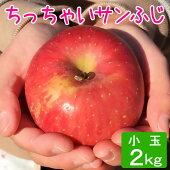 ご予約受付中小玉りんごサンふじ2kg等級D6〜10玉葉とらず味極み減農薬長野県産産地直送