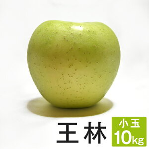 ご予約受付中 小玉 りんご 王林 約10キロ 20〜27玉x2段 等級D 10kg 送料無料 葉とらず 味極み 減農薬 長野県産 産地直送