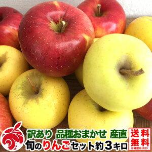 訳あり 食べ比べ 旬のりんごセット 約5キロ 品種おまかせ 2〜3種類 11〜30玉 葉とらず 減農薬 長野県産 産地直送 等級C 5kg 送料無料