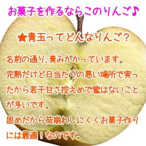 ご予約受付中お菓子用りんごサンふじ3kg蜜なし9〜15玉/送料無料葉とらず味極み減農薬長野県産産地直送