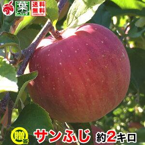 12月上旬より 贈答用 りんご サンふじ 約2キロ およそ5〜8玉 葉とらず 信州りんご 長野県産 産地直送 送料無料 等級A 2kg プレゼント ギフト