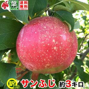 12月上旬より 家庭用 りんご サンふじ 約3キロ およそ7〜12玉 葉とらず 信州りんご 長野県産 産地直送 送料無料 等級B 3kg プレゼント ギフト