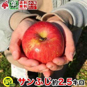 12月上旬より 家庭用 小玉 りんご サンふじ 約3キロ 11〜16玉 3kg 等級D 送料無料 葉とらず 信州りんご 減農薬 長野県産 産地直送