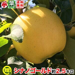 11月上旬より 贈答用 りんご シナノゴールド 約3キロ およそ7〜12玉 葉とらず 信州りんご 長野県産 産地直送 傷・サビあり 送料無料 等級A 3kg