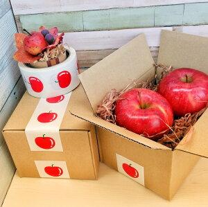 送料無料 りんご テープ 2個セット 50mm×10M かわいい 梱包 りんご デザイン ガムテープ オシャレ 北欧柄 ラッピング 青森限定 mt ブログ紹介 お買い得 牛乳パック椅子 DIY
