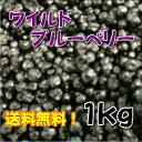 ワイルドブルーベリー 1kg お得な大容量パック ドライブルーベリー 送料無料!