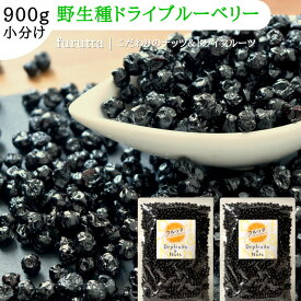 ドライブルーベリー 小粒 野生種 アメリカ産 合計900g 450gx2袋
