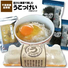 だしと海苔で楽しむうこっけいの卵10個入千葉県産 鶏卵 卵 烏骨鶏 お取寄せ 生 ギフト