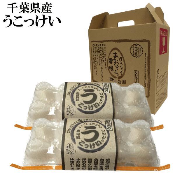 【うこっけいの卵20個入】   北川鶏園さんの烏骨鶏(うこっけい)!!