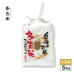 令和元年産 多古米 5kgお米 5kg ギフト 自宅用 玄米 白米 精米 コシヒカリ 千葉県産 多古産