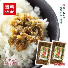 青唐辛子味噌250g×2袋 ネコポス便 ご飯のお供 青唐辛子みそ おにぎり 青唐辛子 通販 味噌 少しのおかず ご飯あれば 喜ぶ 喜ばれる
