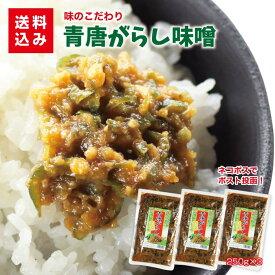 青唐辛子味噌250g×3袋 送料込みご飯のお供 青唐辛子みそ お取り寄せ おにぎり 少しのおかず ご飯あれば 喜ぶ 喜ばれる 送料無料
