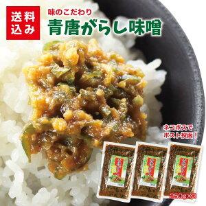 青唐辛子味噌250g×3袋 送料込みご飯のお供 青唐辛子みそ 青唐辛子 お取り寄せ 味噌 みそ 少しのおかず ご飯あれば 喜ぶ 喜ばれる