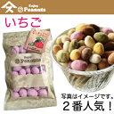 【Enjoy Peanuts いちご】   千葉県産落花生をサクサクコーティングしました。この甘酸っぱさが美味。落花生、人気アイテム、手土産、お土産、詰合せギフ...