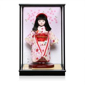 【ひな人形】【市松人形】八寸市松人形:京友禅衣装:松寿作:ケース入り【浮世人形】