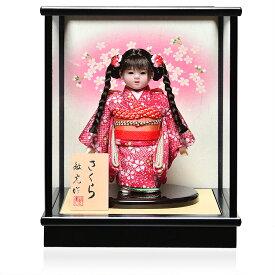 【雛人形】【ひな人形】【市松人形】4号市松人形:縮緬桜花柄衣裳ケース付:敏光作【三つ編】:敏光作【浮世人形】