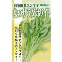 葉野菜(白茎細葉エンサイ) 種 【なつサラダ ホワイト 小袋】