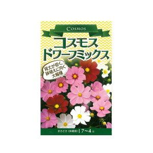 コスモス 種 【コスモス ドワーフミックス 小袋】