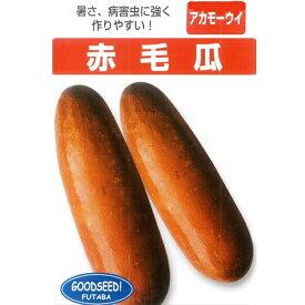 瓜(つけうり) 種 【沖縄赤毛瓜 小袋】