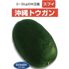 瓜(小〜中玉向き品種) 種 【沖縄冬瓜 小袋】