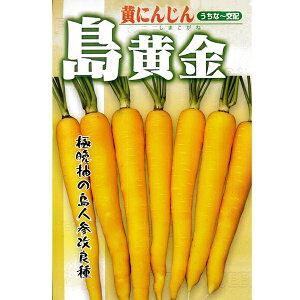 ニンジン 種 【島黄金 小袋】【低純度種子(約15%の割合でオレンジ色の人参が発生) 増量無し品】