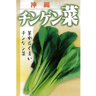绿叶的油菜