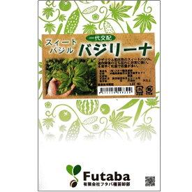 葉野菜(スィートバジル)種子 【バジリーナ 100粒ペレット】